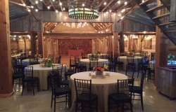 DFW wedding reception