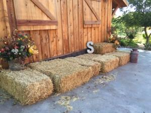 10-27-2014 Hay Bales at Freight Depot
