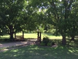 6-26-2015 Entrance to Pecans - 01