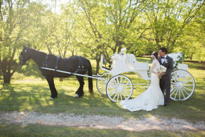 Some bridal couples elect to be escorted along the countryside at Hollow Hill by horse-drawn carriage