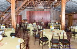 rustic wedding reception Dallas, TX