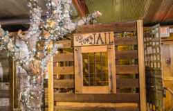 rustic wedding venues in fort worth tx