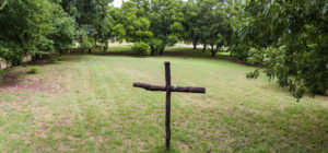 Country Cross in Pecan Groves