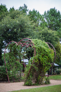Heart Arbor at Hollow Hill