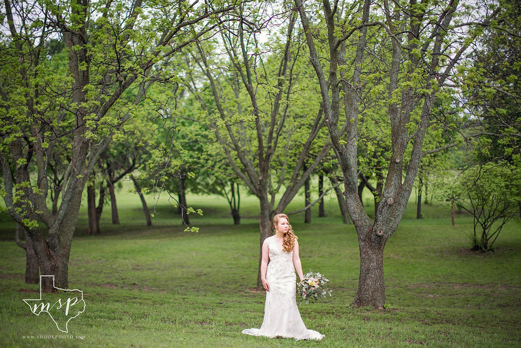 Bridals amongst the Pecan Grove at Hollow Hill in Weatherford