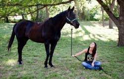 horse photoshoot at hollow hill venue