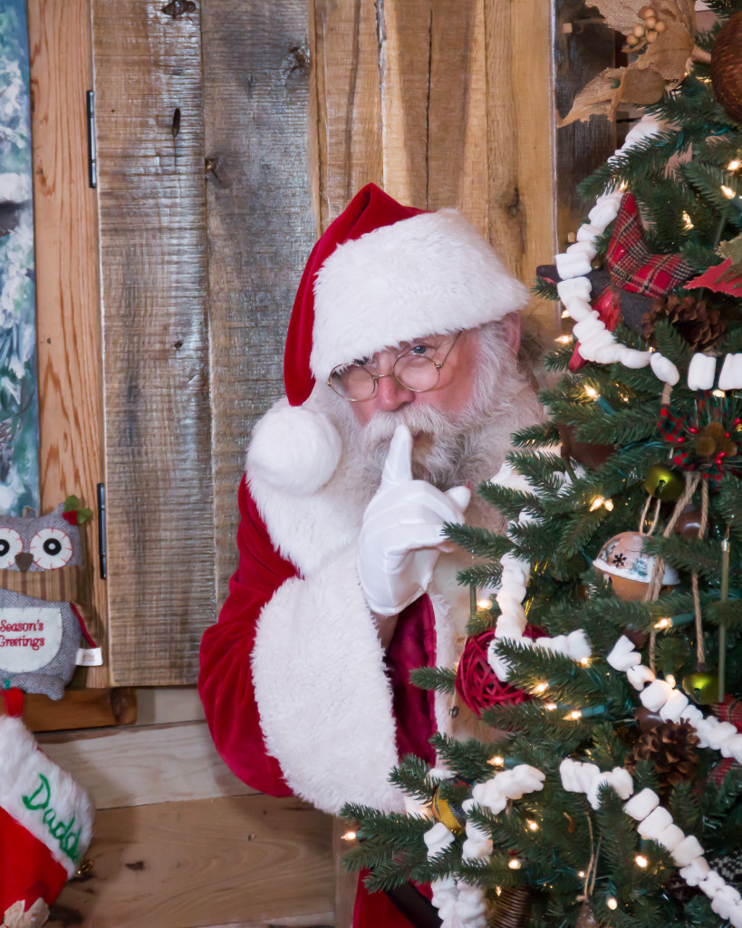 Santa in the rustic barn at Hollow Hill