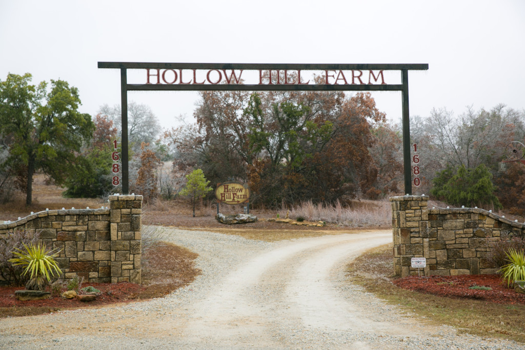 hollow hill farm event