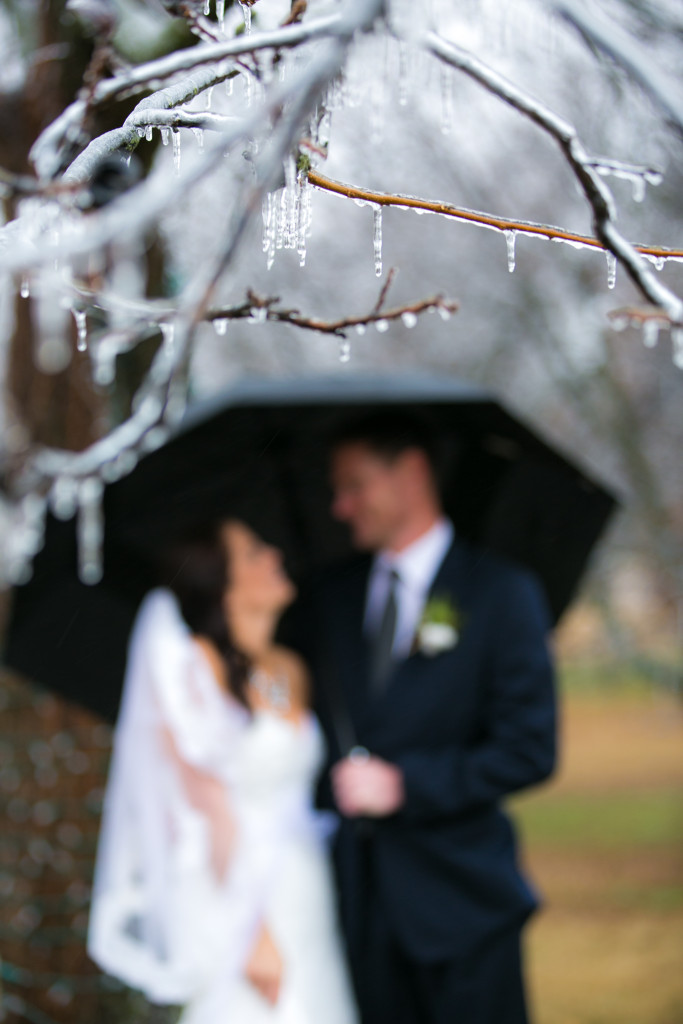 Icicles adorn the many pecans at Hollow Hill for this winter wedding