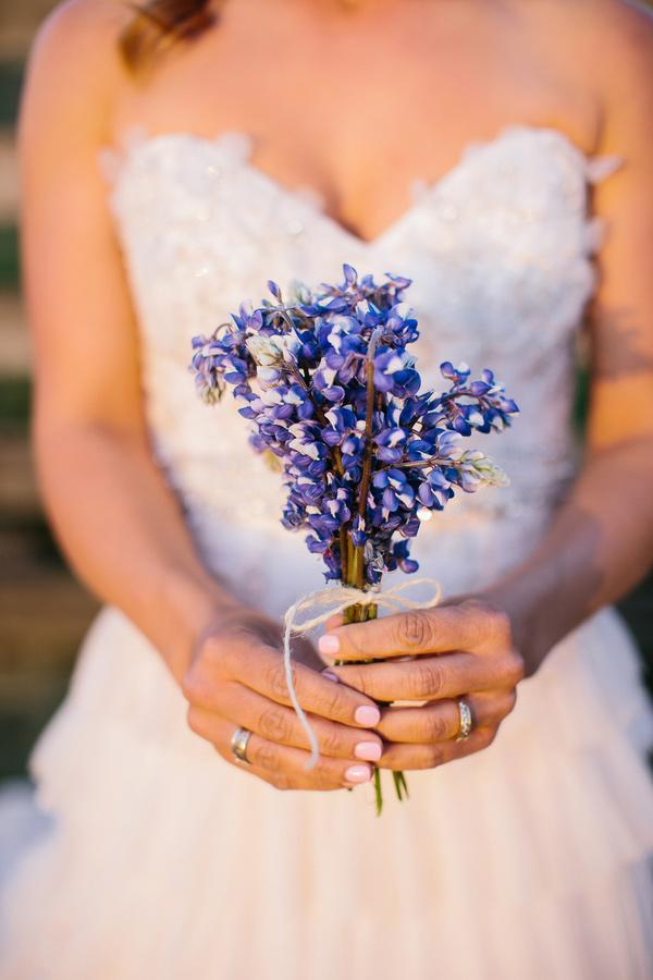 Texas bluebonnet wildflowers on your wedding day bluebonnet flowers mightylinksfo