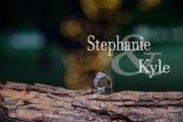 Stephanie and Kyle